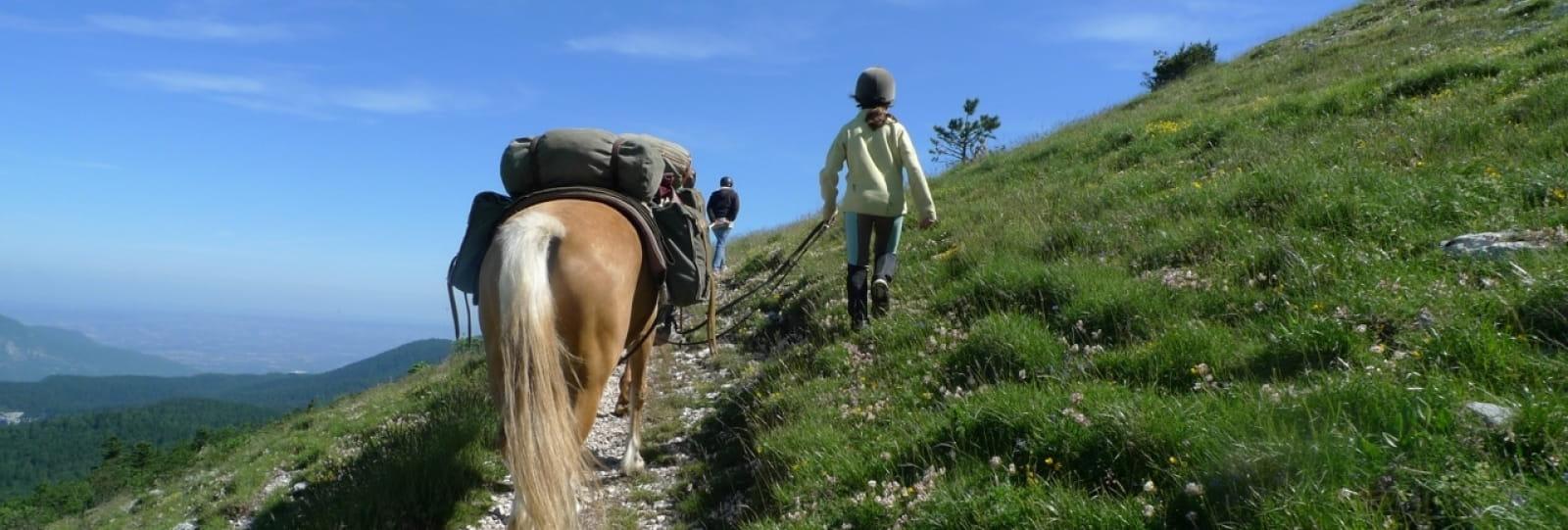 Equitation au Camp de Noëlle