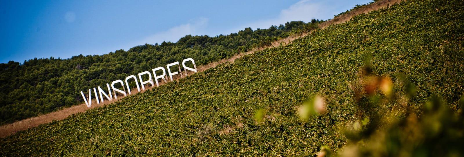 oenotoer Vinsobres - Suze-la-Rousse