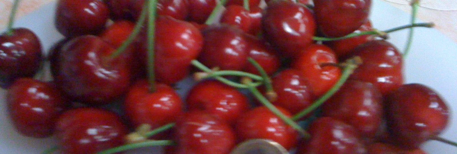 Ferme Valette - Gilfruits