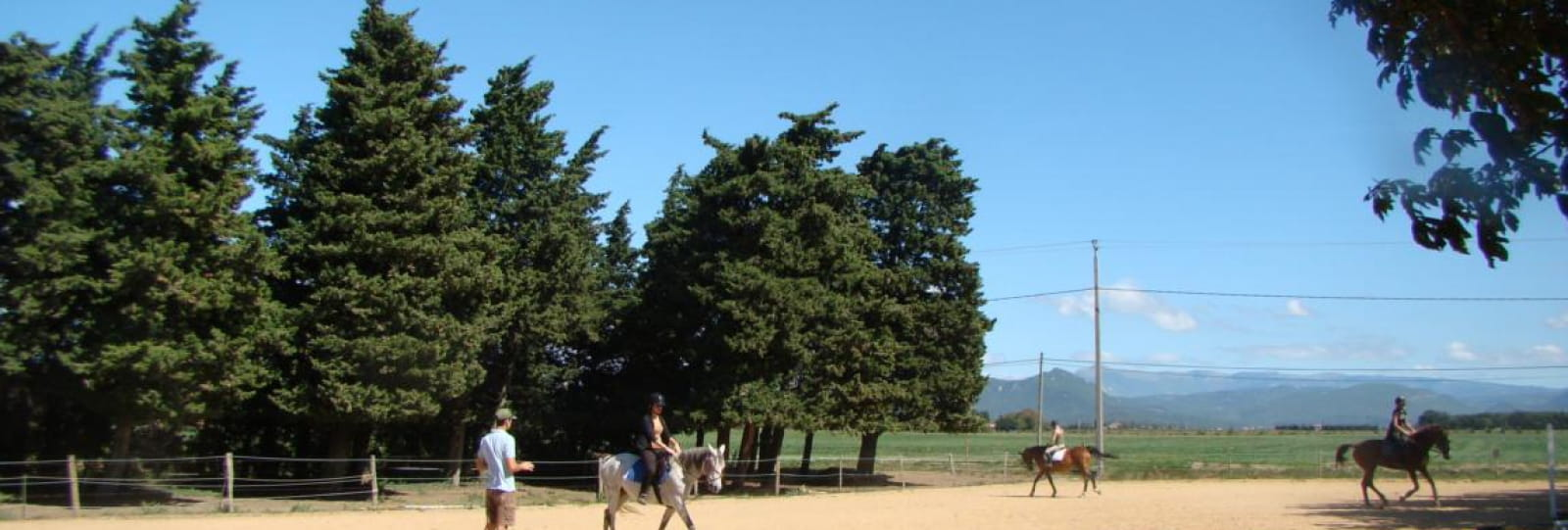 Les lavandes équitations