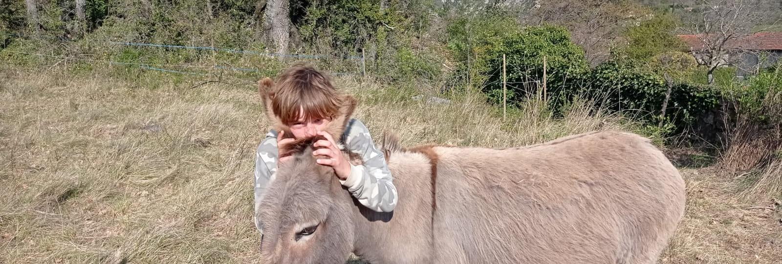 Les chemins de l'âne