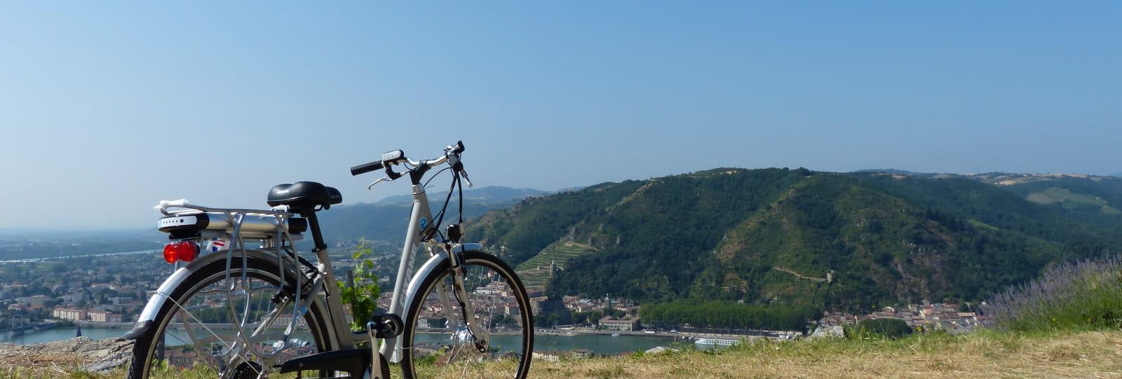 Vélo électrique dans les vignes