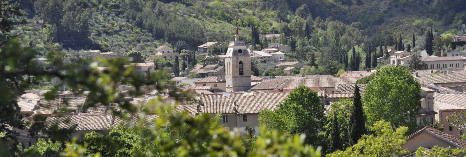 Plants & Wellness : Buis-les-Baronnies / Montbrun-les-Bains