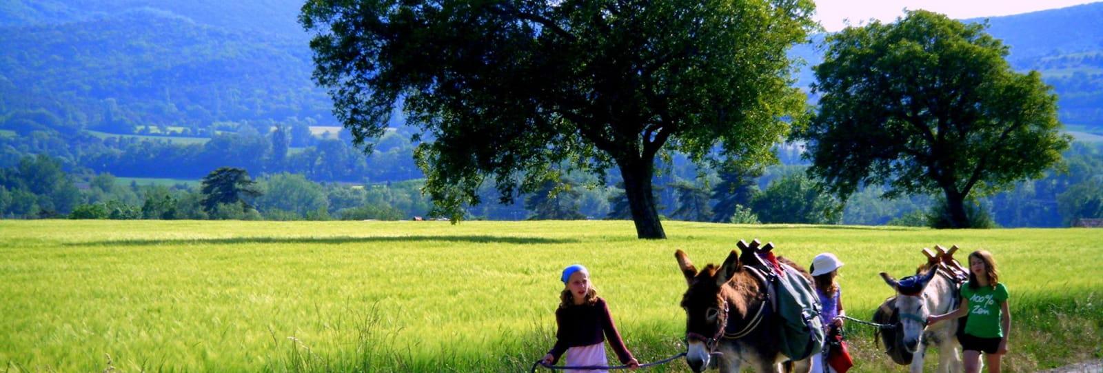 Balade accompagnée du doux pas de l'âne
